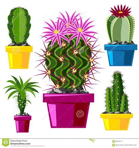 style flower cactus flat style nature desert flower green cartoon