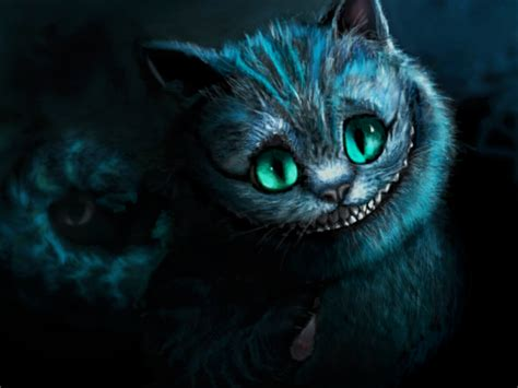Cheshire Cat Blue best cheshire cat photos 2017 blue maize