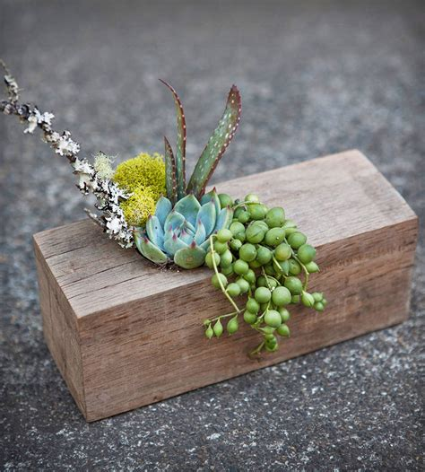 rectangular wooden beam planter with succulents home