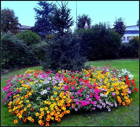 foto giardini fioriti giardino