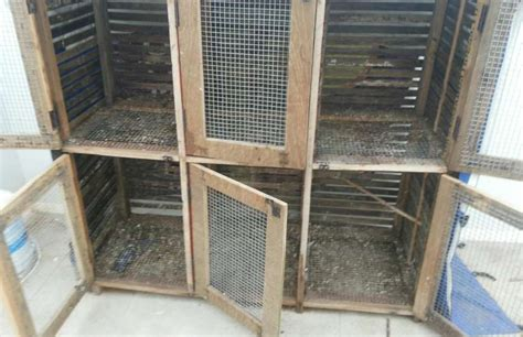 how to cage a how to make pigeon cage bird cages