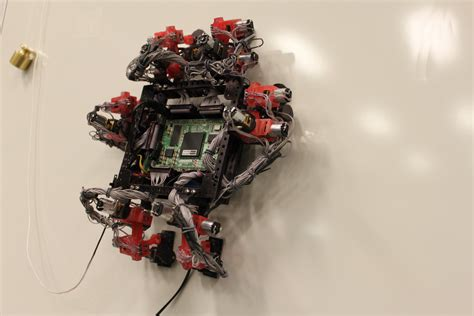 robotic wall space in images 2013 12 abigaille wall crawler robot