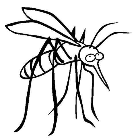 Mosquito Coloring Page free printable mosquito coloring pages for