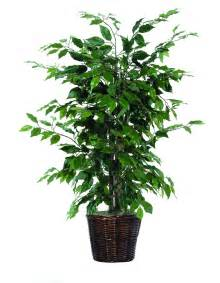 best fake plant reviews top picks furniture decor