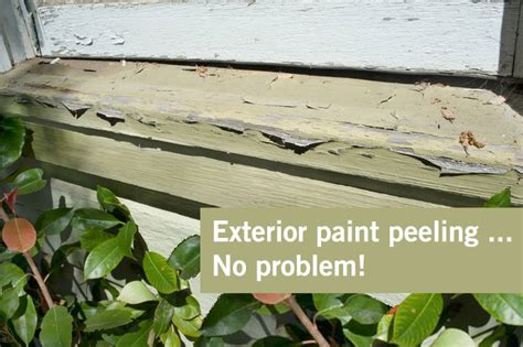 exterior paint peeling peeling paint exterior