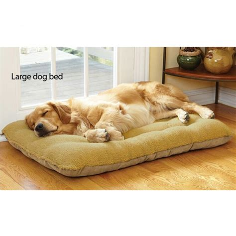 inexpensive dog beds popular large dog bed big buy cheap large dog bed big lots