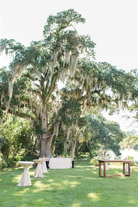 outdoor wedding venues in charleston south carolina charleston wedding venue south carolina wedding plantation wedding southern wedding outdoor