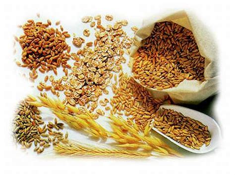 whole grains carbohydrates what are the best carbohydrates to gain weight and build