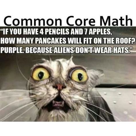 Common Core Memes - common core math quot if you have 4 pencils and 7 apples how many pancakes will fit on the roof