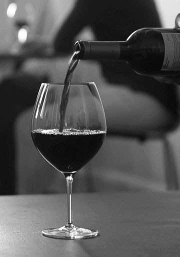 Mendoza: vinhos argentinos sob a Cordilheira | Beba vinho