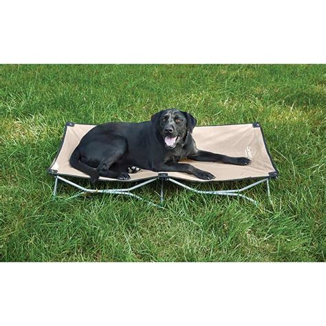 portable dog bed portable pup pet bed carlson pet products 8020 pet