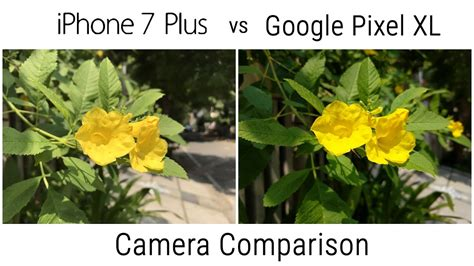 pixel xl  iphone   camera comparison youtube