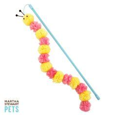 puppy playtime petsmart summer with your pet on dresses toys and safety tips