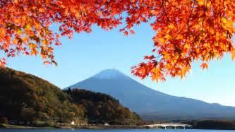 Autumn Leaves Images » Ideas Home Design