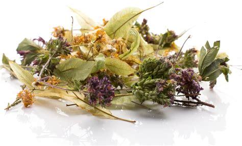 fiori secchi fiori secchi come utilizzarli pollicegreen