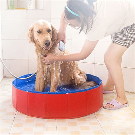 dogs and bathtubs pet bathtub for dogs 28 images 7 common bath time