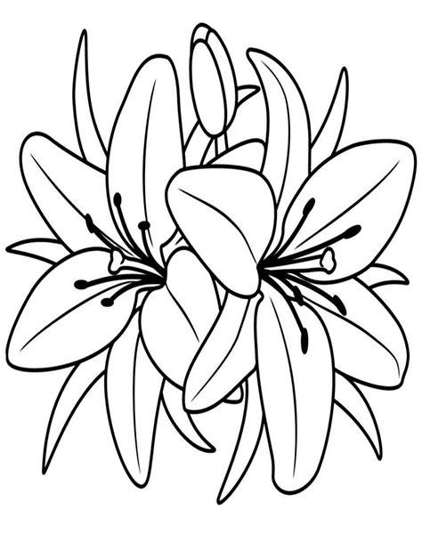 fiori di primavera da stare e colorare fiori da disegno 28 images fiori disegni da colorare