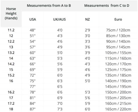 rug weight guide sizing guide horsefit