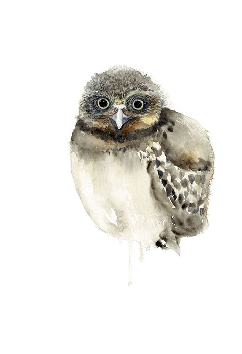 burrowing owl printable pictures burrowing owl print bird watercolour nursery print baby owl