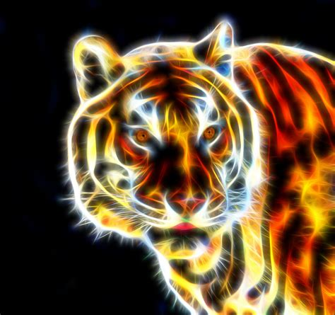 wire images tiger fractal wire free stock photo domain