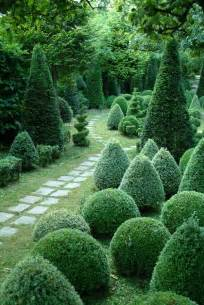 Best Shrubs For Topiary - what shape will you choose for your topiary bush good