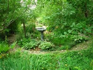 woodland garden ideas woodland garden 1024x768 gardening