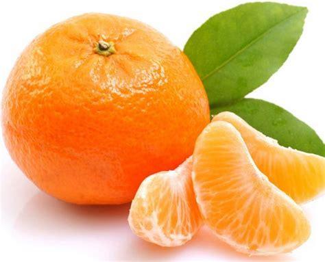 Makanan Yang Menyehatkan Paru Paru   geoponikanea