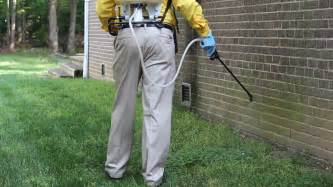 house pest control top rated ant control company in springfield va