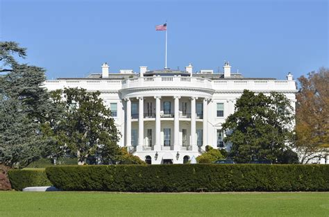 What Is The White House by All American Animals Pets Of The White House