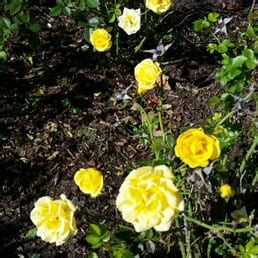 Raket Hart Chrome Mx 12 walnut hill park 44 fotos y 12 rese 241 as parques y jardines hart st new britain ct