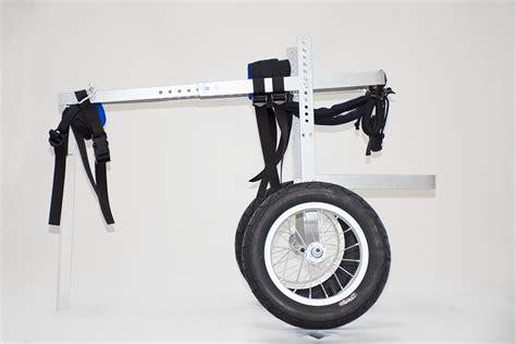 silla ruedas para perros silla de ruedas para perros grandes novecan ortopedia