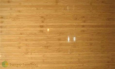 Horizontal Compressed High Gloss Import Bamboo Flooring
