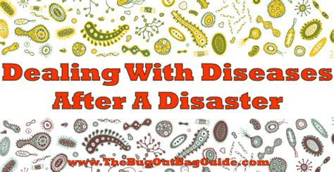 dealing with diseases after shtf: a guide to survival health