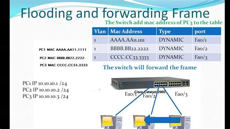 Mac Address Lookup Table How The Switch Learn Mac Address