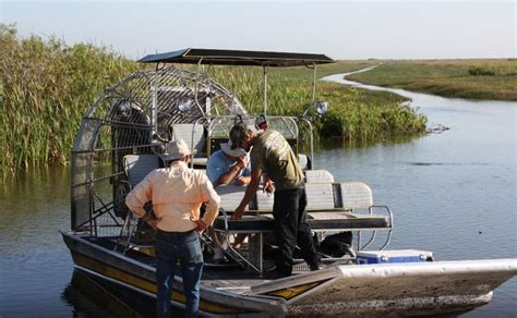 everglades airboat tours broward county airboat tours