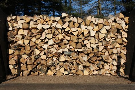 firewood know what you are buying