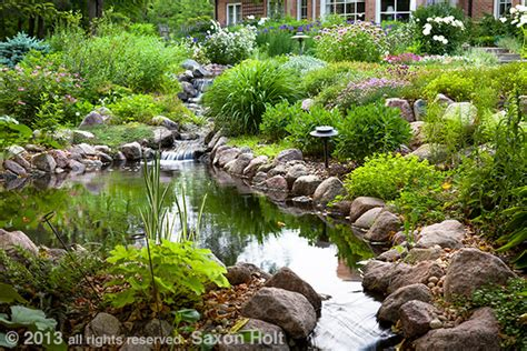 how to create a pond and stream for an outdoor waterfall photo of stream and pond in backyard garden