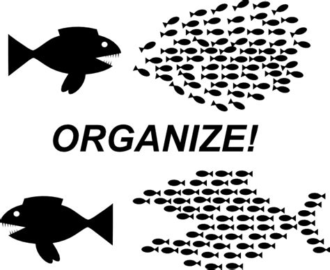 organise or organize organize fish picture clip art at clker com vector clip