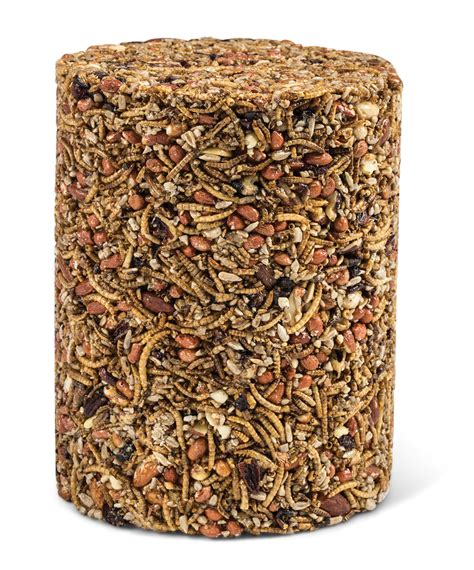 duncraft com mr bird bugs nuts fruit large cylinder