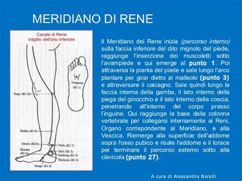 harrison principi di medicina interna principi di medicina interna harrison italiano ebook