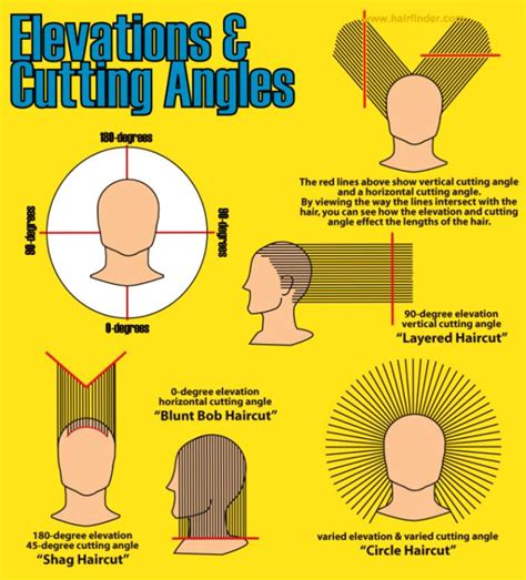haircut diagrams how to diagram of head for showing haircuts google search