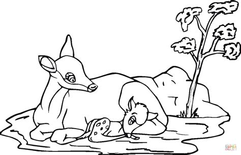 fawn deer coloring pages baby deer coloring page coloring home