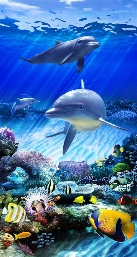 Dolphin On The Sea Iphone Dan Semua Hp 1 dolphin reef static cling for glass doors windows by wallpaper for windows coming soon