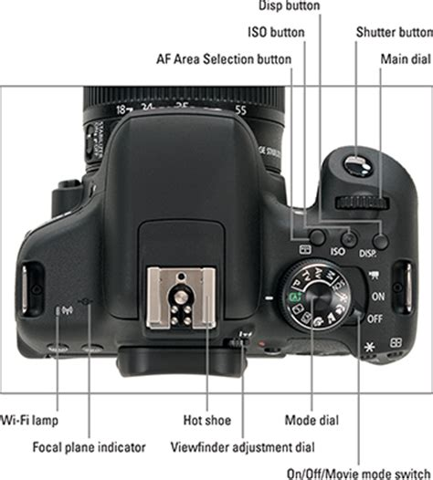 the canon eos rebel t6i/750d camera layout dummies