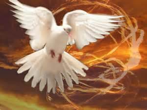 celebrating hope at pentecost | heaven2earth