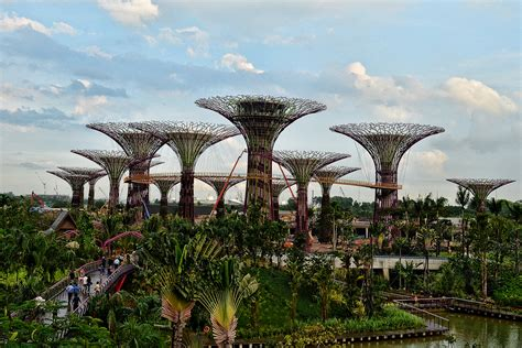 the supertrees of singapore 171 twistedsifter