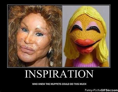 Funny Muppet Memes - funny muppet memes
