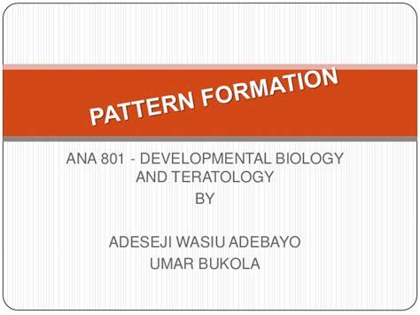 pattern formation in biological development pattern formation