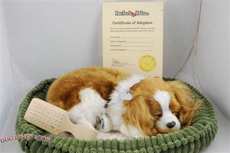 lifelike puppy cavalier king charles like stuffed animal breathing petzzz ebay