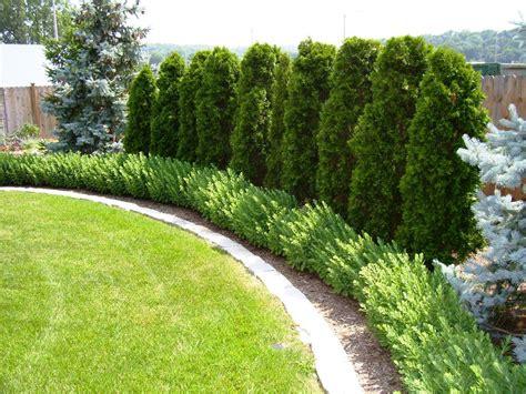 Lowes Garden Edging by Landscape Edging Options Lowes 28 Images Landscape
